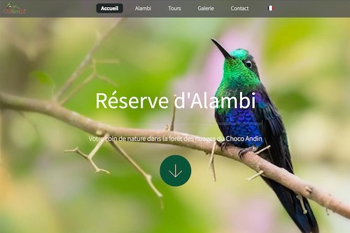 Alambi Reserve - IN PROGRESS - Design and complete development of the website, translation and social marketing